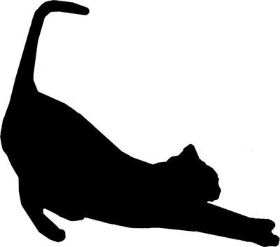 猫 ポーズ